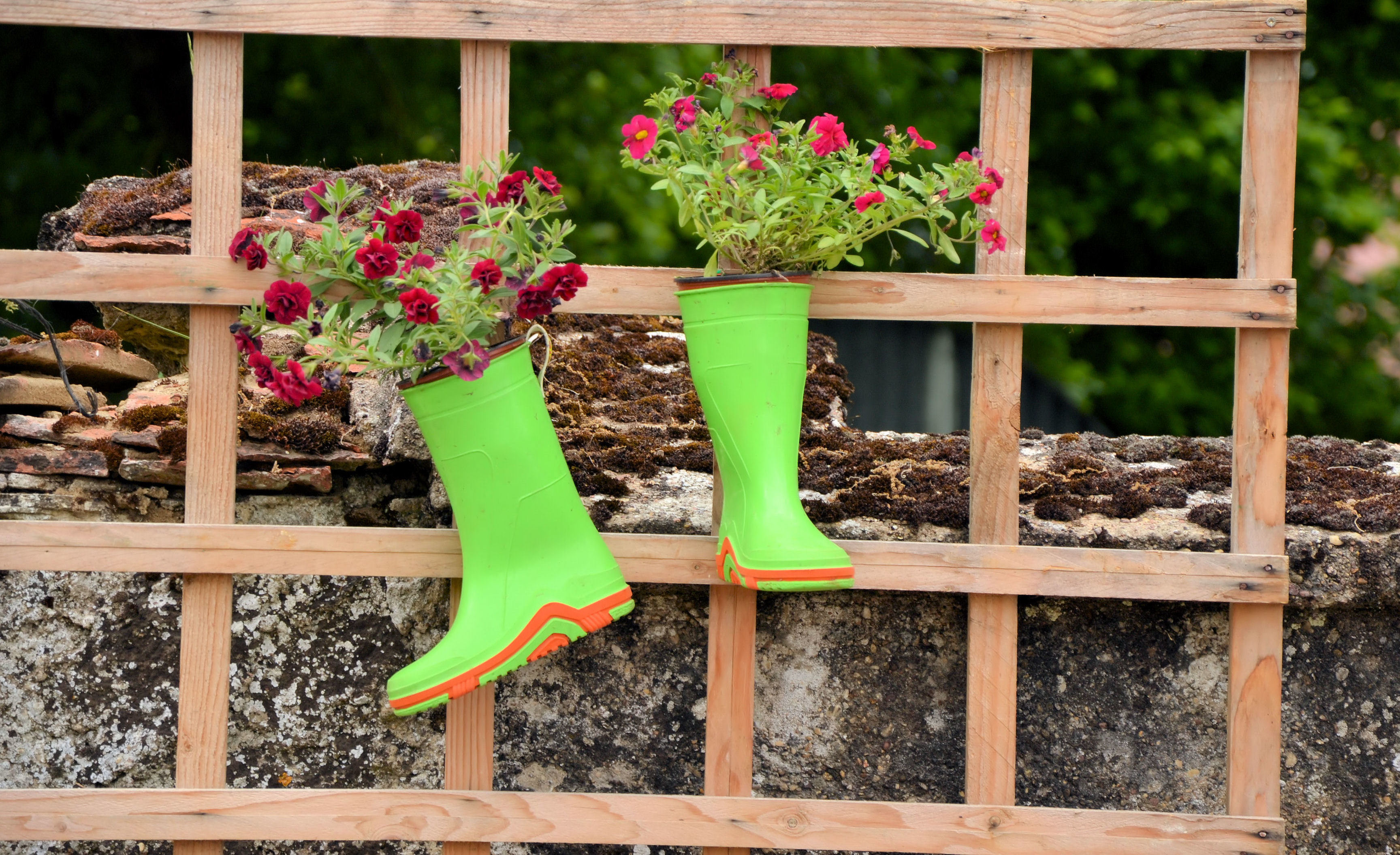 Hazlo t mismo ideas geniales para decorar tu patio fotos telemundo - Como disenar un jardin grande ...