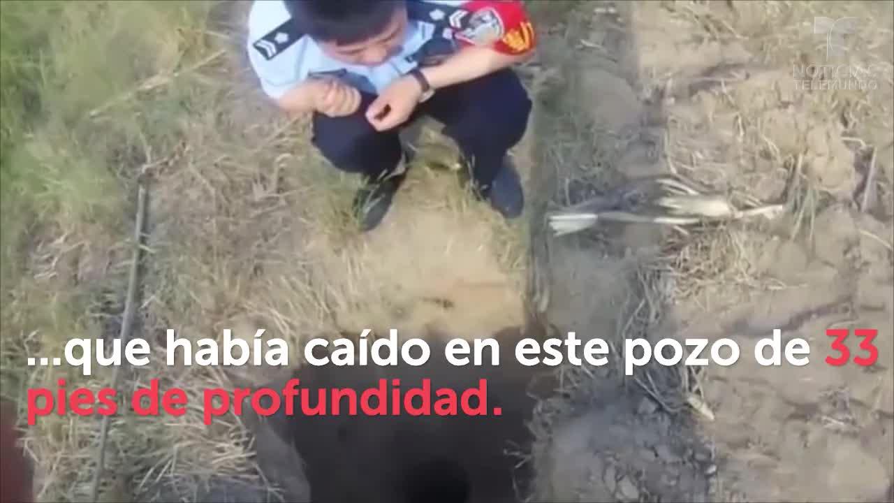 Impresionante rescate de niño que cae a estrecho pozo - Telemundo