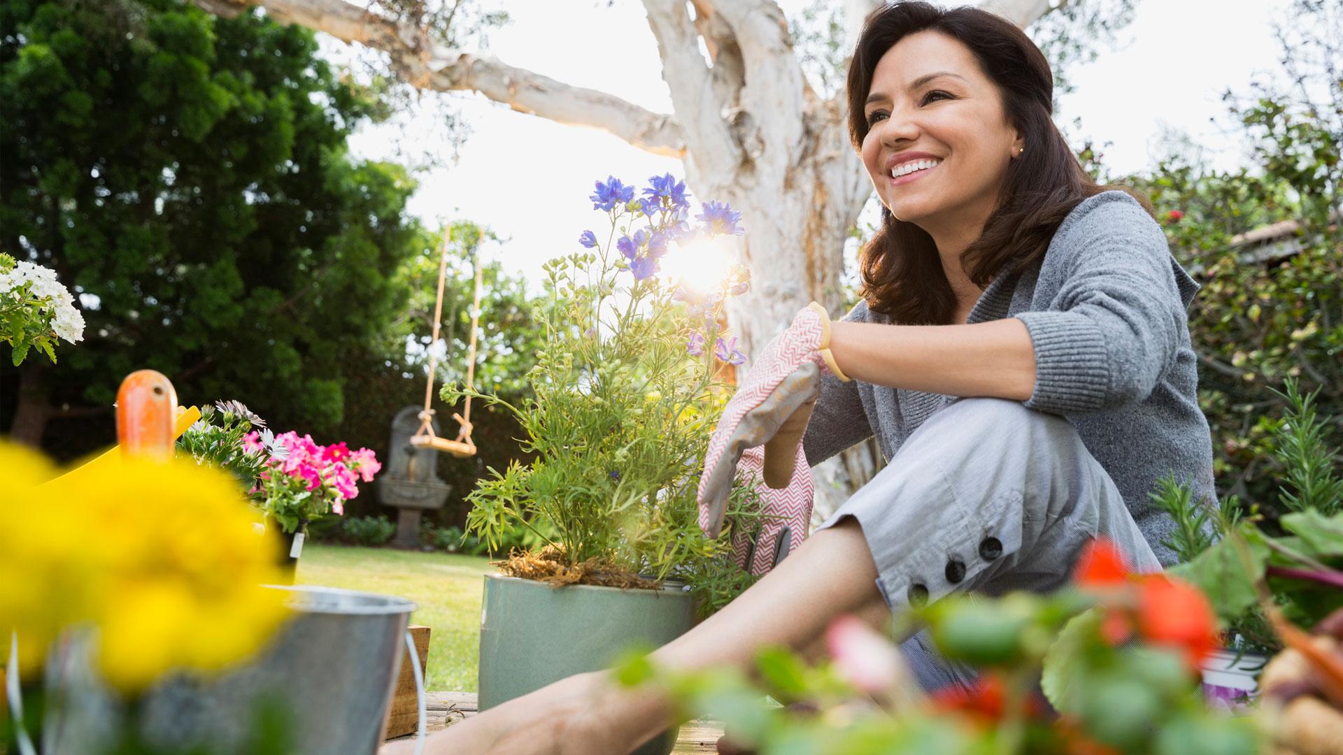 bd89099ad Abona en el momento justo y otros 6 tips para ahorrar en el cuidado de tu  jardín | Telemundo