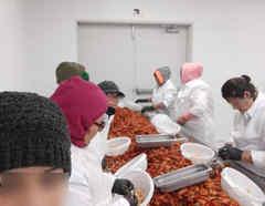 Trabajadoras en la industria de mariscos exigen mayores protecciones para no contagiarse con el COVID-19