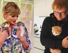 Taylor Swifty Ed Sheeran