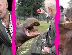 Gianluca Vacchi alimenta a un hipopótamo