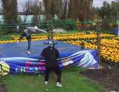 Luchadores mexicanos siembras flores junto a su ring