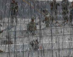 Soldados en la frontera entre México y EEUU en una imagen de archivo