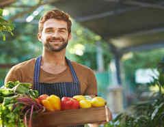 Joven cosecha vegetales en su huerto casero