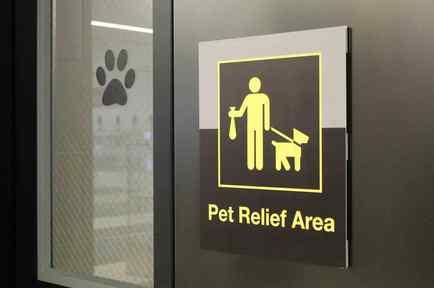 Sanitarios para mascotas