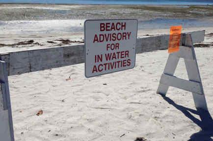 señal de alerta en playas de florida