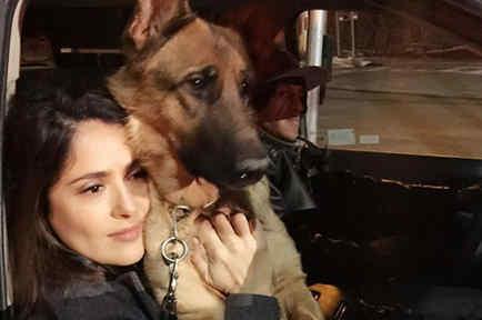 Salma Hayek abrazando a un perro