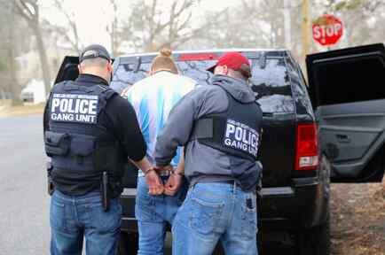 Los arrestos se realizaron en NY, Long Island y el Valle de Hudson. Cortesía: ICE