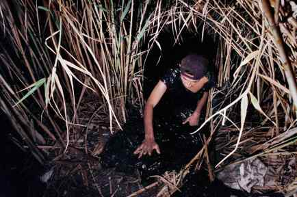 Indocumentados se lanzan a canal huyendo de la migra