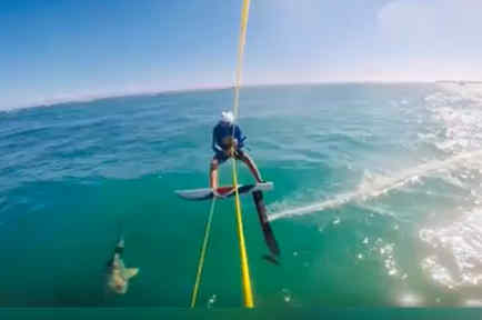 Un surfista tropezó con un tiburón