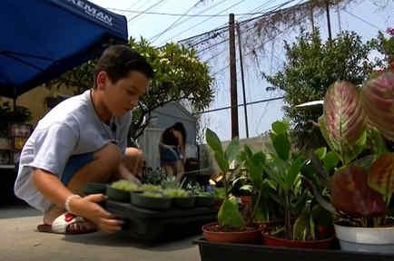 Aarón Moreno emprende un negocio de plantas para ayudar a su familia durante la pandemia en  Los Ángeles.