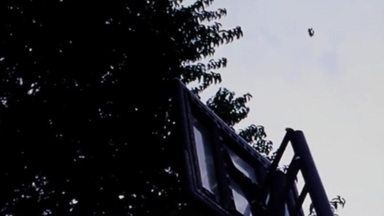 Supuesto OVNI captado en cámara por un niño