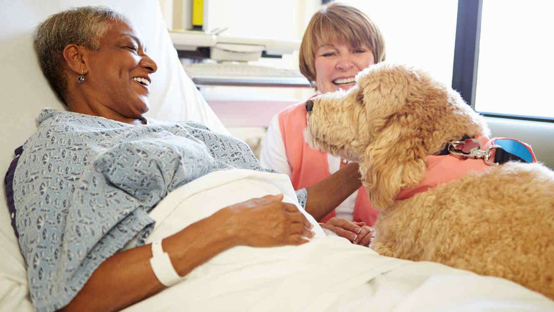 Un enfermo con su perro