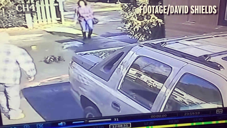 Video de mujer que maltrata a su perro se vuelve viral