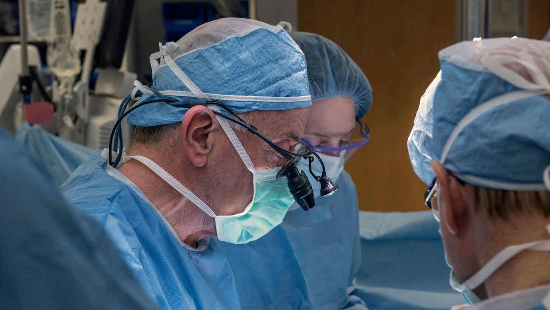 transplante de utero
