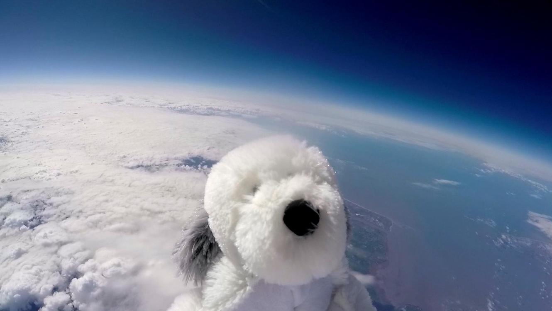Perro de peluche en la estratosfera