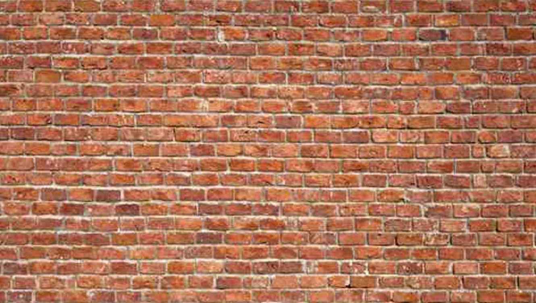 Trata De Salir De Su Casa Y Encuentra Un Muro De Ladrillo