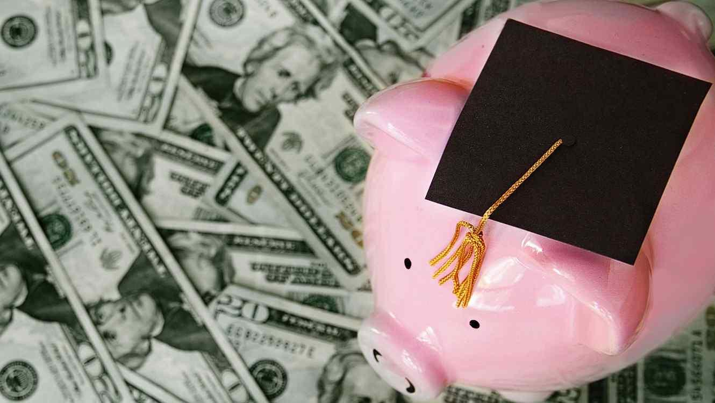 Cerdito con birrete de graduación sobre billetes