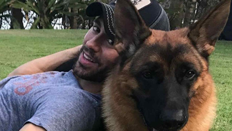 Enrique Iglesias y su mascota