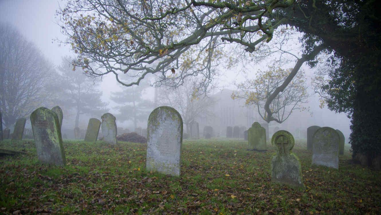 Cementerio con niebla