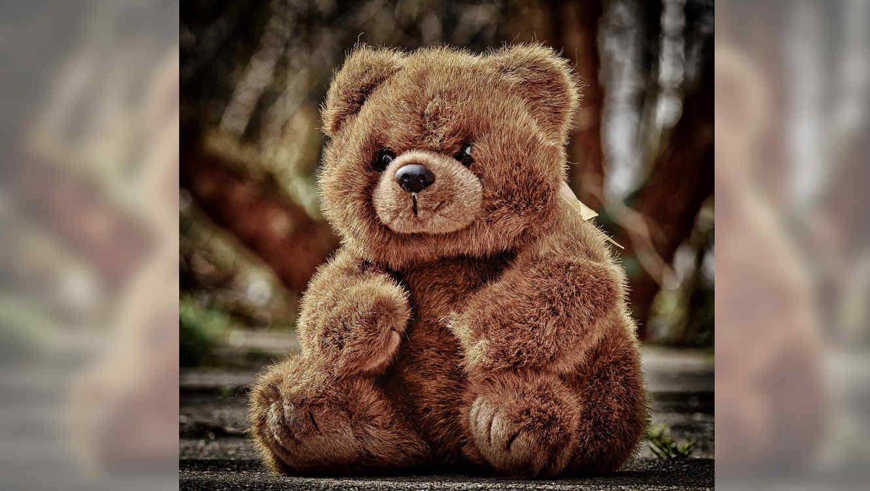 Existe un oso de peluche inspirado en Donald Trump y se llama Trumpy Bear.