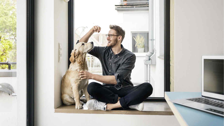 giardia en perros se transmite a humanos