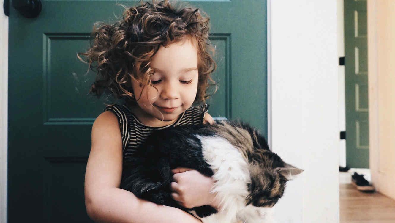 Niña cargando a su gato