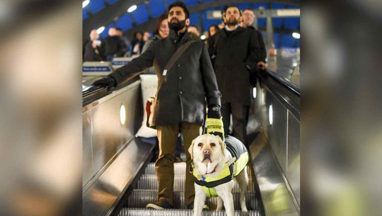 Amit Patel y su perro guía