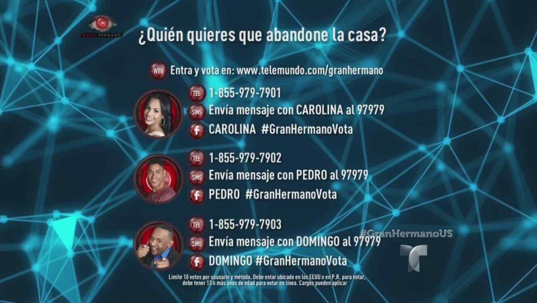 Gráfica de votación con Carolina, Pedro y Domingo en Gran Hermano