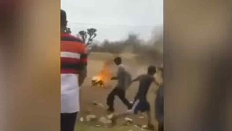 Jovenes prenden fuego aperro y graban video