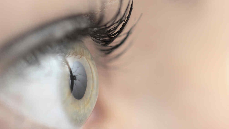 Resultado de imagen para ojo humano real