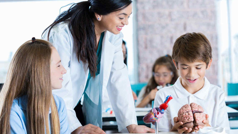 Maestra y estudiantes en clase de biología con un cerebro