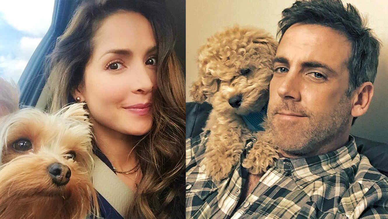 Mascotas-Carlos Ponce, Carmen Villalobos