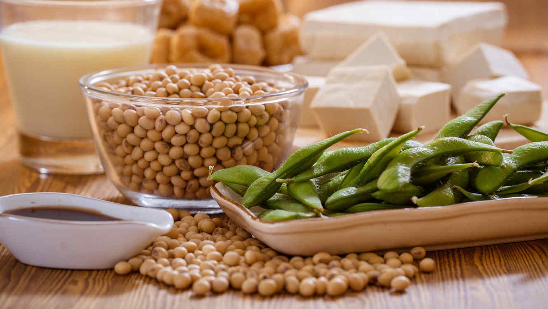 Variedad de alimentos a base de soja