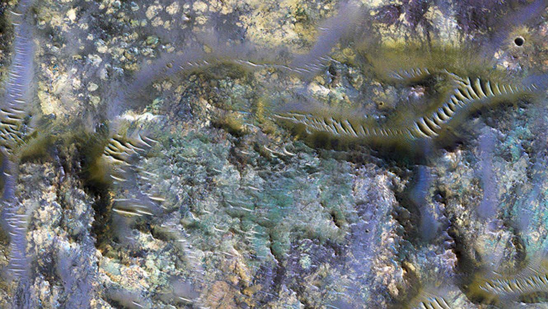 Gusanos en el cráter de Marte