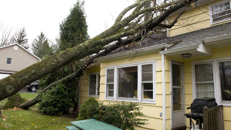 Árbol caído sobre una casa