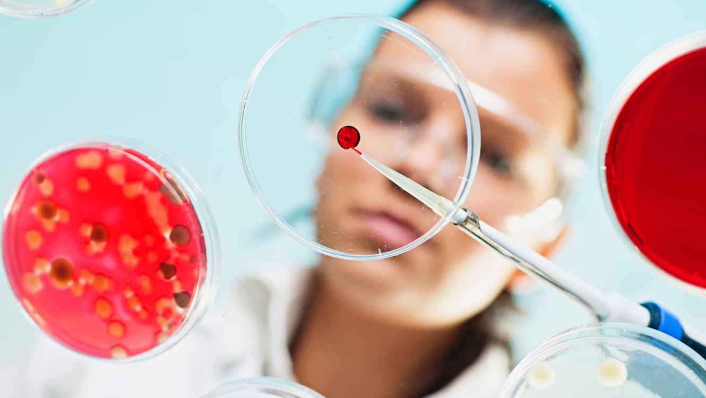 Se inyectó bacteria de 3.5 millones de años para la 'eterna juventud'