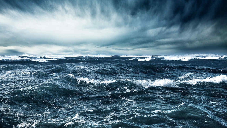 Científicos descubren un extraño depredador marítimo prehistórico