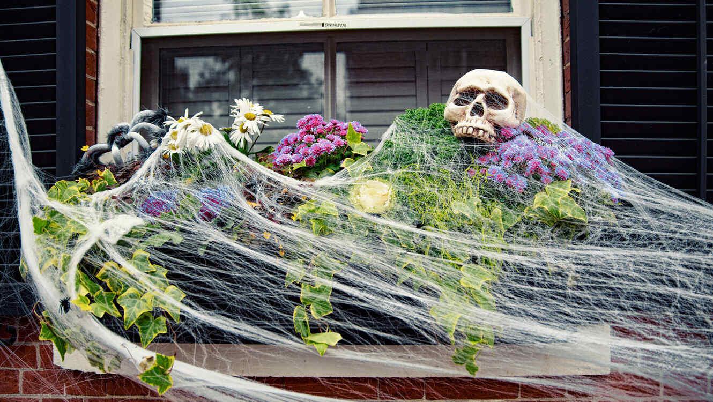 Ventana decorada para Halloween