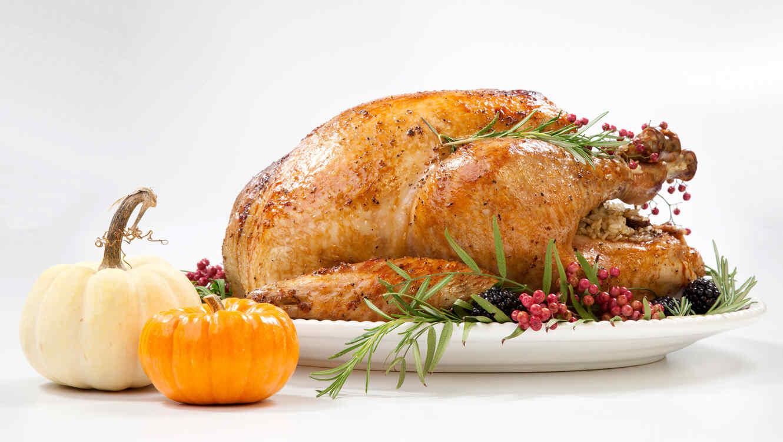 Pavo de Thanksgiving