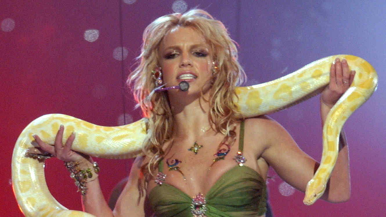 Britney Spears & 'Tiger King's Doc Antle's Collab