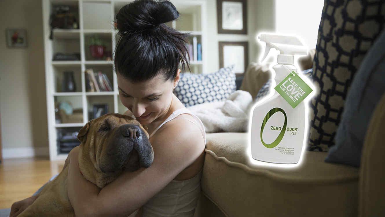Los mejores productos para eliminar olores de mascotas