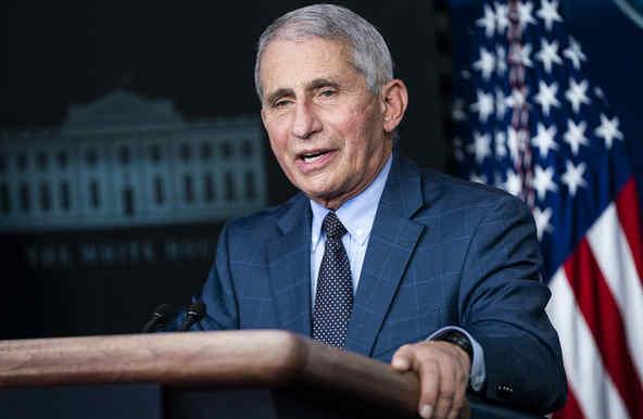 El director del Instituto Nacional de Alergias y Enfermedades Infecciosas, Anthony Fauci, en una conferencia de prensa del Grupo de Trabajo sobre el Coronavirus en la Casa Blanca el 19 de noviembre de 2020 en Washington, DC.