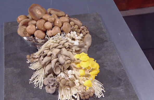 Retos con hongos por la inmunidad en MasterChef Latino