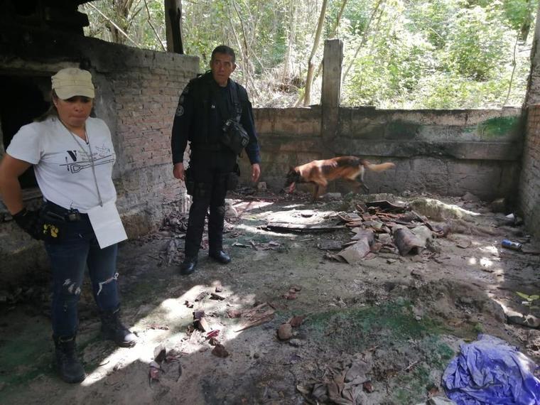 Búsqueda de restos humanos en un rancho de Veracruz