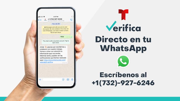 Al suscribirse al servicio de T Verifica en WhatsApp, podrá recibir noticias y un resumen de nuestros contenidos cada semana.