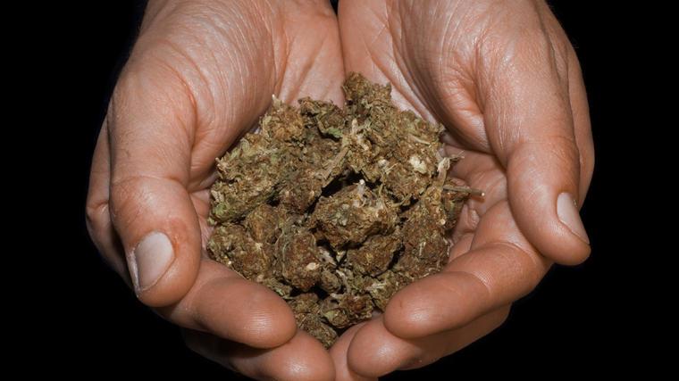 El uso de marihuana con fines medicinales ya es el legal en México.