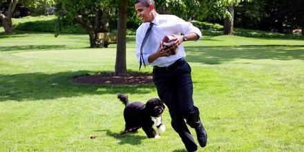El expresidente Obama juega fútbol con el perro de la familia Bo en el jardín sur de la Casa Blanca el 12 de mayo de 2009.