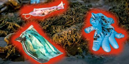 Mascarillas y guantes terminan en el mar